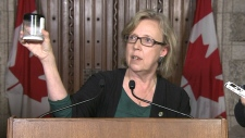 Green Party reaction to Northern Gateway decision