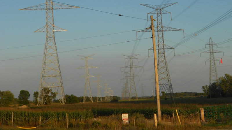 Transmission lines that run from the Bruce nuclear power plant on Lake Huron to Milton, Ont., are seen on Tuesday, Aug. 16, 2011. (Colin Perkel / THE CANADIAN PRESS)