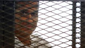 Al-Jazeera journalist Peter Greste sentenced