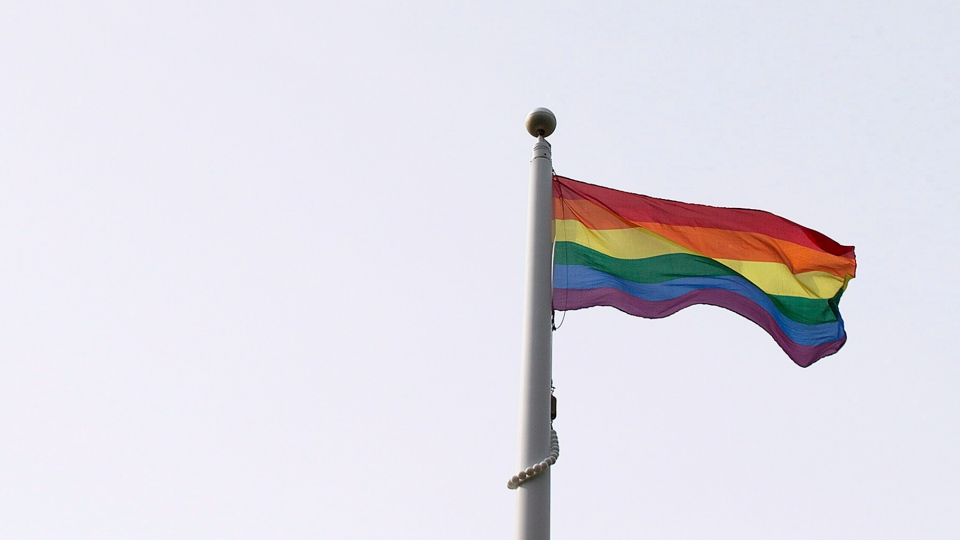 A Pride flag is raised during a ceremony at Queen's Park in Toronto on Monday, June, 23, 2014. THE CANADIAN PRESS/Michelle Siu