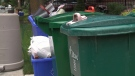 City of Ottawa residents place their green bins, recycling, and garbage cans on the side of the street for pick-up on Wednesday, July 9, 2014. (CTV Ottawa)