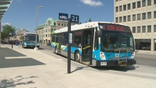 Guelph Transit buses sit outside the downtown terminal on Friday, July 11, 2014.