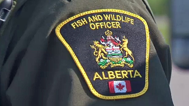 Alberta Fish and Wildlife
