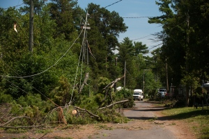 A New Brunswick power line that was dragged down by fallen trees is shown in this photo from July 11, 2014. (FLICKR/NB Power)