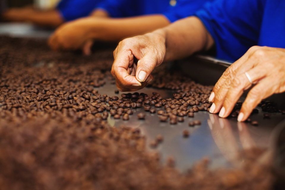 Colombia is one of the world's largest exporters of coffee. (Mila Supinskaya / Shutterstock.com)
