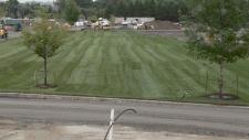 Lansdowne Park lawn