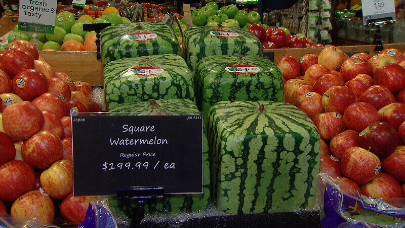 cost of a watermelon
