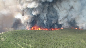 The Mount McAllister wildfire burns in the northeastern region of B.C. on Tuesday, July 15, 2014. (B.C. Wildfire Management Branch)
