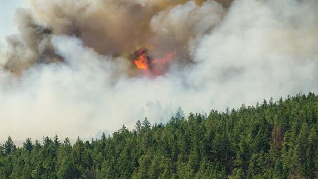 West Kelowna wildfire prompts state of emergency