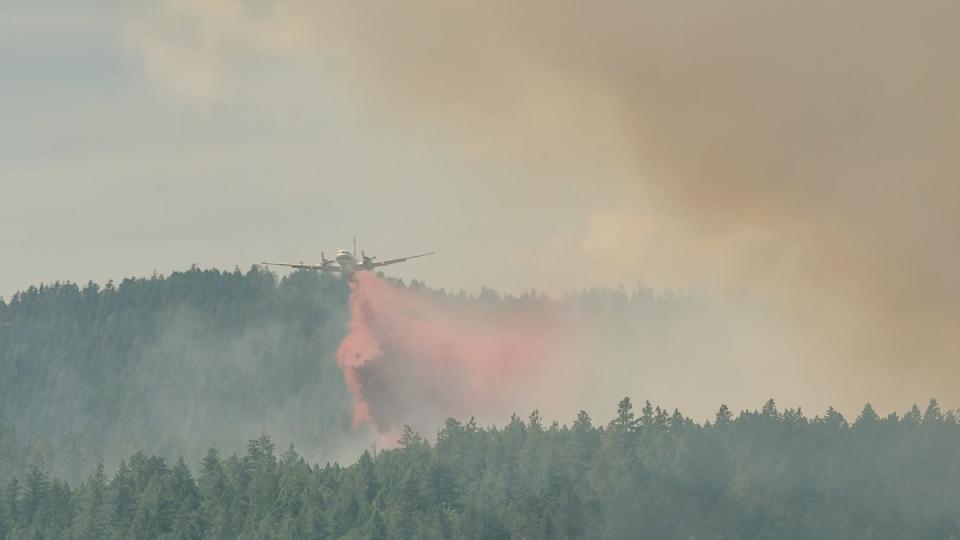 Environment Canada warns of smoke, poor air quality for B.C., Alberta