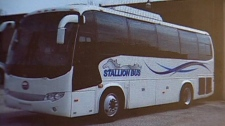 A China-made Stallion bus is seen in this photo taken Tuesday.