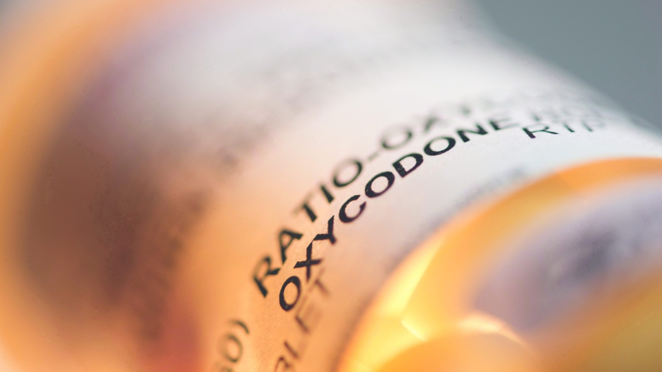 Prescription pill bottle containing oxycodone and acetaminophen are shown in this June 20, 2012 photo.  (Graeme Roy / THE CANADIAN PRESS)