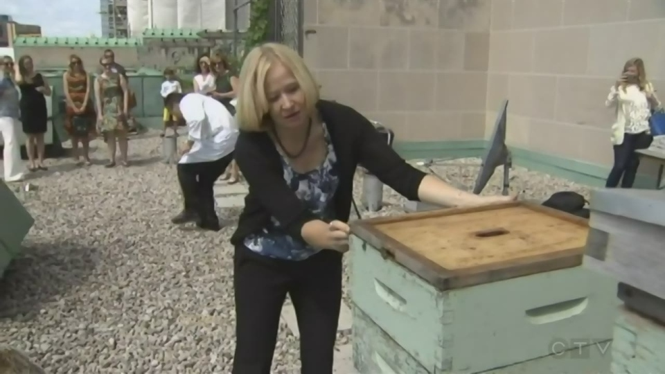 Laureen Harper at the beehive on the roof of the Fairmont Royal York Hotel (CTV News)
