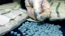 Toronto police and Canada Customs have made what they claim is the largest Canadian seizure of the designer drug Ecstasy, at approximately 170,000 tablets worth an estimated $5 million, shown at a press conference in Toronto, May 17, 2000. The pills were found starpped to the bodies and in the clothing of five people who entered Canada on the same flight from Paris, Tuesday, May 16, 2000.(CP PHOTO/Tannis Toohey)