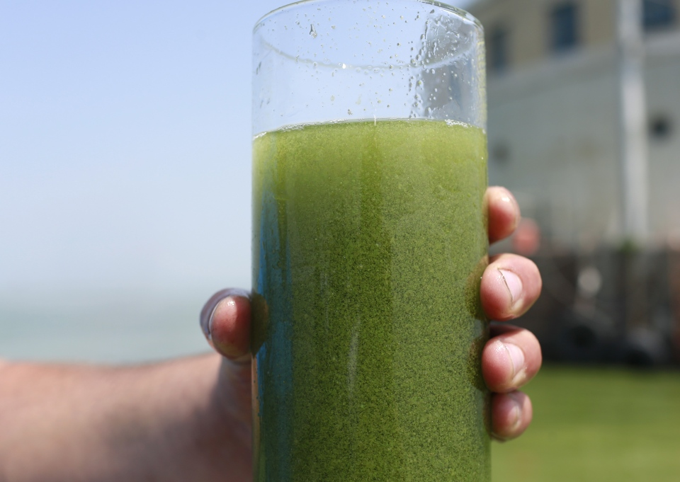 A sample glass of Lake Erie water is photographed near the City of Toledo, Ohio, water intake crib, on Sunday, Aug. 3, 2014. More tests are needed to ensure that toxins are out of Toledo's water supply, the mayor said Sunday, instructing the 400,000 people in the region to avoid drinking tap water for a second day. (AP/Haraz N. Ghanbari)