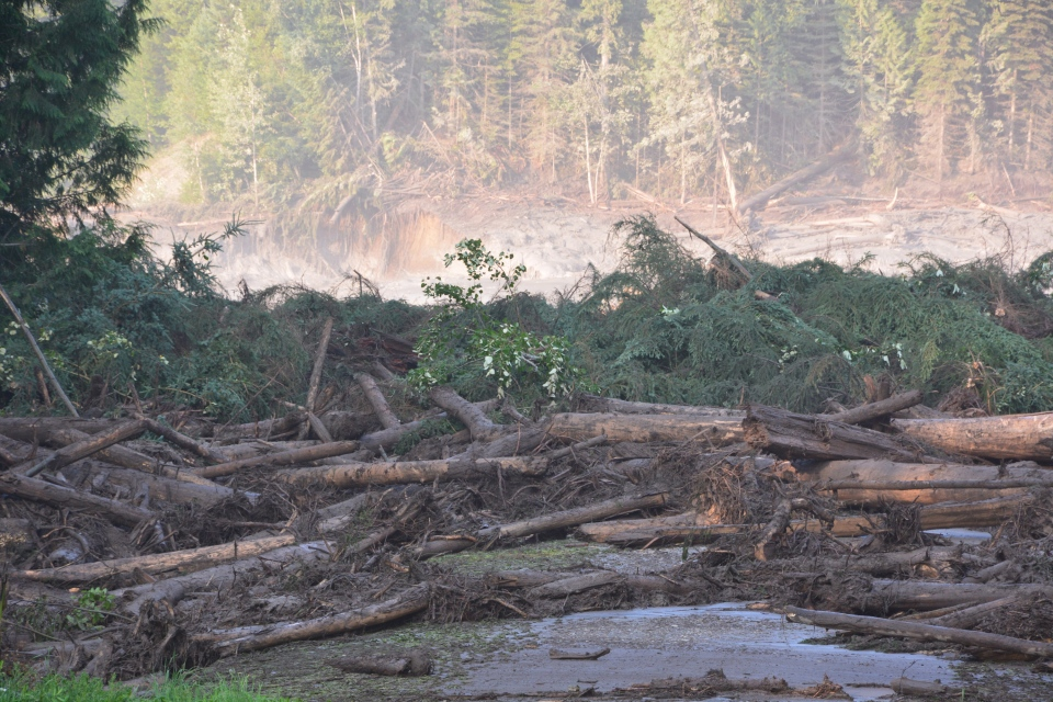 The tailings pond of the Mount Polley mine, southeast of Quesnel, B.C., was breached, discharging waste water into Hazeltine Creek on Monday, Aug. 4, 2014. (Provided / Cariboo Regional District)