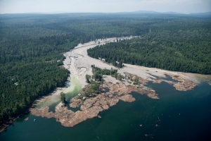 Contents from a tailings pond is pictured going down the Hazeltine Creek into Quesnel Lake near the town of Likely, B.C., Tuesday, Aug. 5, 2014. (Jonathan Hayward / THE CANADIAN PRESS)