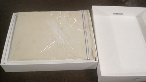 Future Shop and Best Buy have launched a major fraud investigation after as many as 10 fake iPad 2 models made of modeling clay have turned up in Metro Vancouver stores. (CTV)