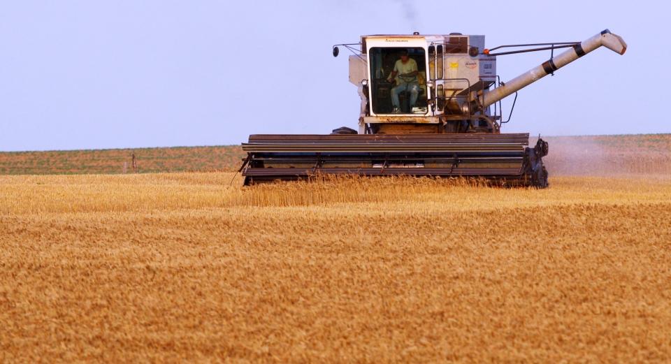 Kansas grain farmer