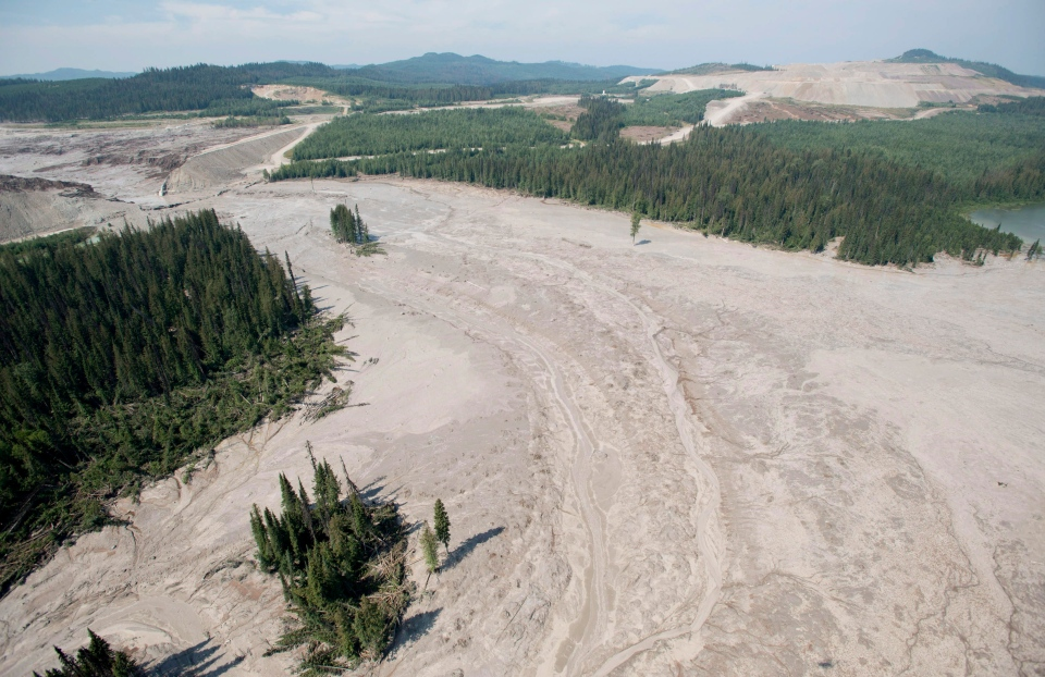 An aerial view shows the damage caused by a tailings pond breach near the town of Likely, B.C. Tuesday, August, 5, 2014. (Jonathan Hayward  / THE CANADIAN PRESS)