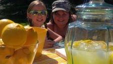 Lemonade sales, charity