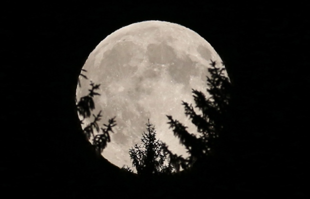 The moon was full and at the closest point in its rotation around the Earth on Sunday, prompting photographers around the world to snap some otherworldly shots of our lunar neighbour. Here&#39;s a roundup of some of the best pictures of the supermoon.<br><br>The full moon peeks through trees in a wood near Rasing, Austria, Sunday, Aug. 10, 2014. (AP/Ronald Zak)
