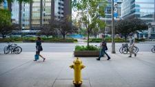 Toronto Cash Cow Fire Hydrant
