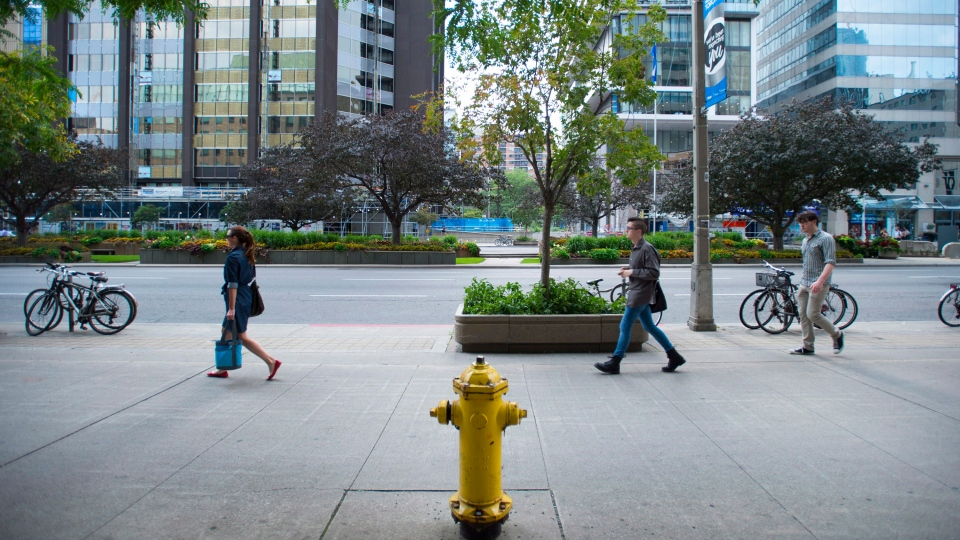 The fire hydrant located at 393 University Avenue in Toronto is pictured on Thursday, August 7, 2014. The hydrant, located approximately 20 feet from the street, is the cause of more parking infractions than any other hydrant in the entire city. THE CANADIAN PRESS/Darren Calabrese