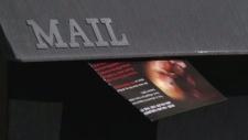 abortion brochures