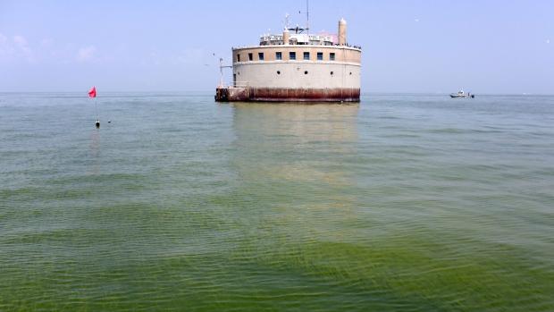 Algae blooms in Great Lakes