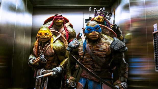 <b>Live Action Movie:</b> Teenage Mutant Ninja Turtles<br><br><b>Synopsis:</b>  Four unlikely heroes rise from the sewers to take down the evil Shredder and his Foot Clan.<br><br><b>Starring:</b>  Megan Fox, Will Arnett, William Fichter, Johnny Knoxville, Tony Shalhoub, Danny Woodburn<br><br><b>Budget:</b>  $125,000,000 (Estimated)<br><br><b>Weekend Gross:</b>  $65,000,000 (U.S.)<br><br><b>Tomatometer:</b>  20 per cent<br><br>(Paramount Pictures)