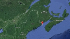 Pilot, paramedic killed in N.B. crash