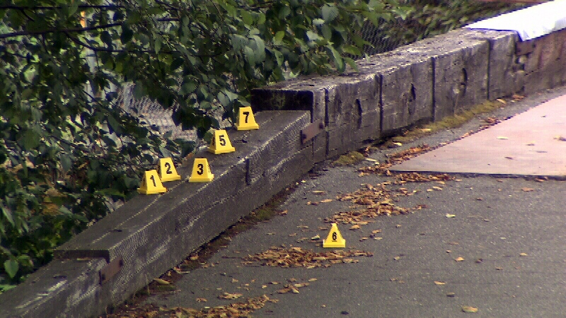 Police markers are seen along a path near the Fraser River in New Westminster after a man's body was found Saturday evening. Police have deemed the death suspicious. Aug. 17, 2014. (CTV)