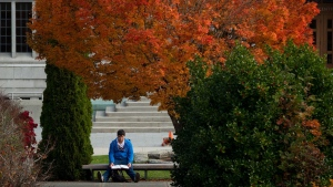 A University of British Columbia student studies under fall foliage on the campus in Vancouver, B.C., on Wednesday October 30, 2013. (Darryl Dyck / THE CANADIAN PRESS)