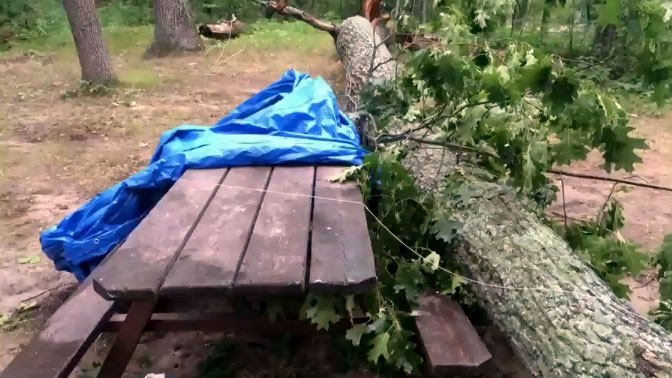 A tree fell on top of a picnic table where Amy Boileau and her son were hiding from a tornado in Grand Bend, Ont. on Sunday, July 27, 2014.