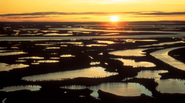 A section of the MacKenzie Delta is shown in this undated handout photo.