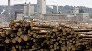 Logs are piled up at West Fraser Timber in Quesnel, B.C., Tuesday, April 21, 2009.