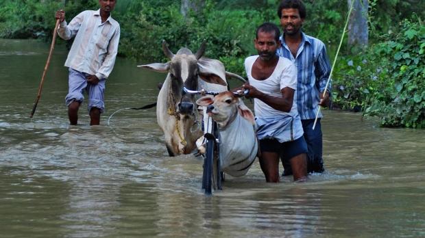 Monsoon in Nepal
