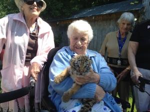 Hug of the tiger: Lifelong dream comes true for Barrie senior