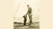 Canada AM: The origin of Winnie the Pooh