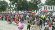 CTV Ottawa: Downtown protest