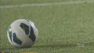 CTV Vancouver: Turf war waged over World Cup grass