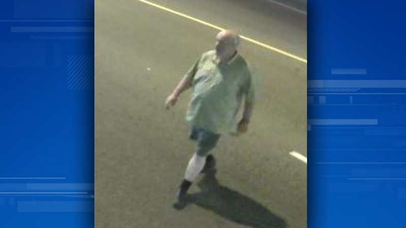 The RCMP is searching for a person of interest in connection with a vehicle vandalism spree in North Vancouver from Aug. 2 to 4, 2014. (Handout)