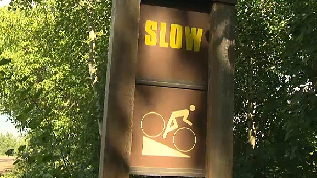 Cyclist fatal, edmonton