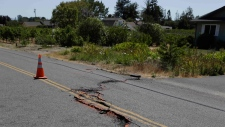 Cracked road in Napa, California