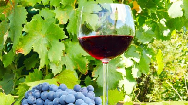 Wine industry turns to crowdfunding