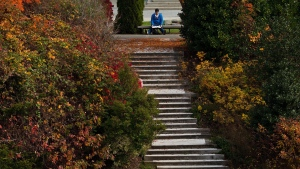 A University of British Columbia student studies as leaves begin to change colour on the campus in Vancouver, B.C., on Wednesday October 30, 2013. (Darryl Dyck / THE CANADIAN PRESS)