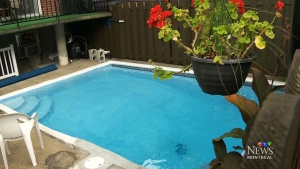 CTV Montreal: Boy in hospital after near drowning