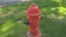 Since 2010, 34,480 tickets were issued to drivers parked too close to hydrants in Winnipeg.