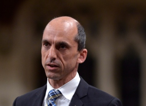 Public Safety Minister Steven Blaney answers a question during question period in the House of Commons in Ottawa, Wednesday, June 11, 2014. (Adrian Wyld / THE CANADIAN PRESS)